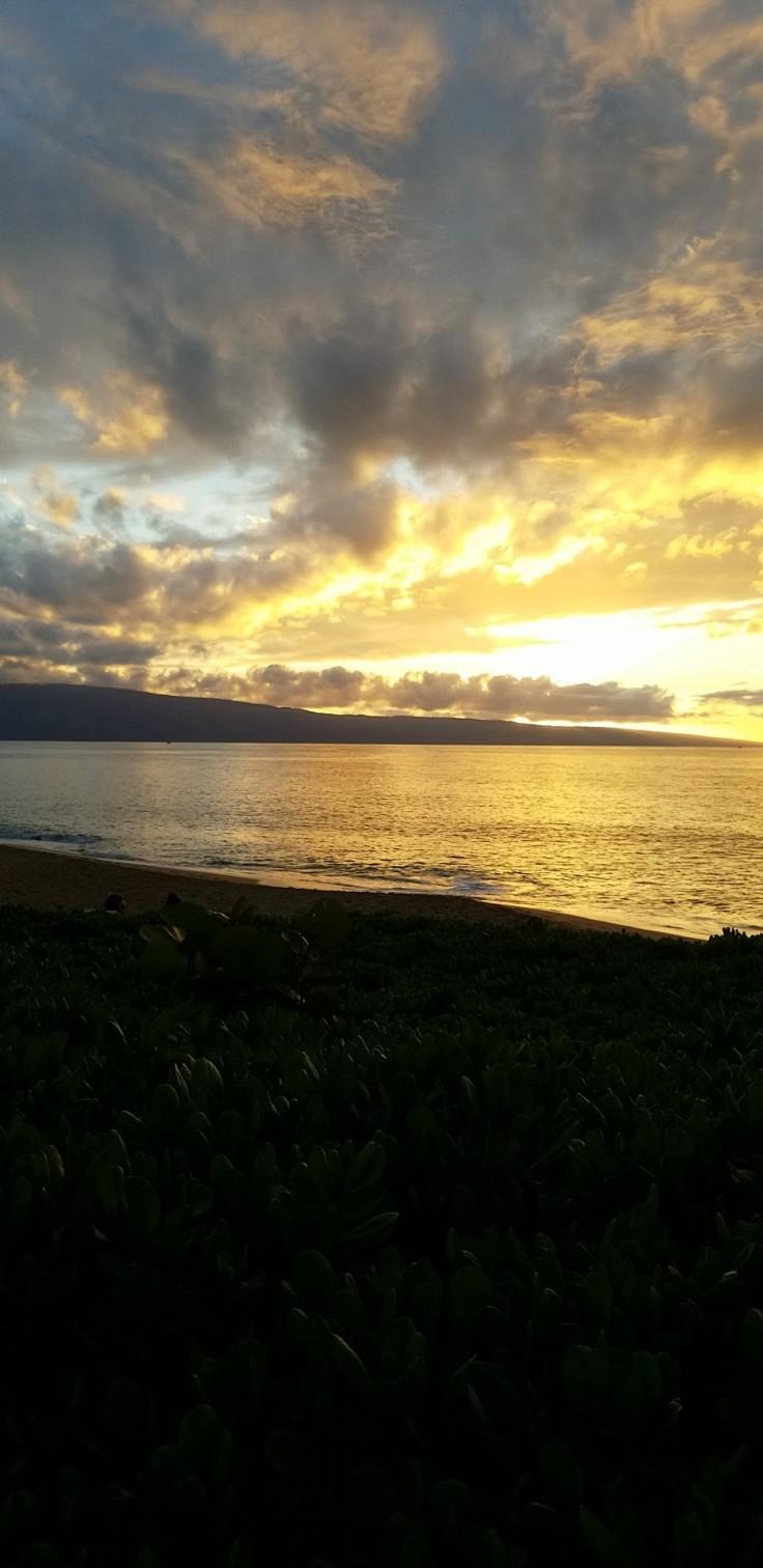 Hawaii 14.jpg