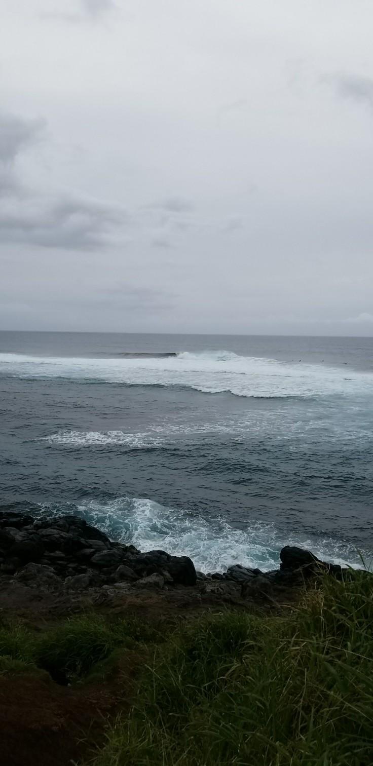 Hawaii 8 .jpg